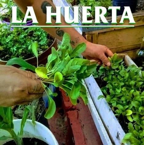 La Huerta Sarandí – Vivero y jardinería